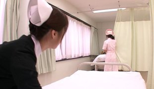 Beautiful lesbian nurses in the hospital room eating muff