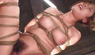 amatør sjarmerende søt asiatisk japansk barmfager