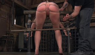 Foxy blonde slut Tracey Sweet gets tied up and has her cunt satisfied